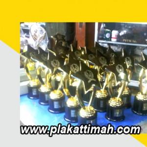 trophy-timah-2-300x300